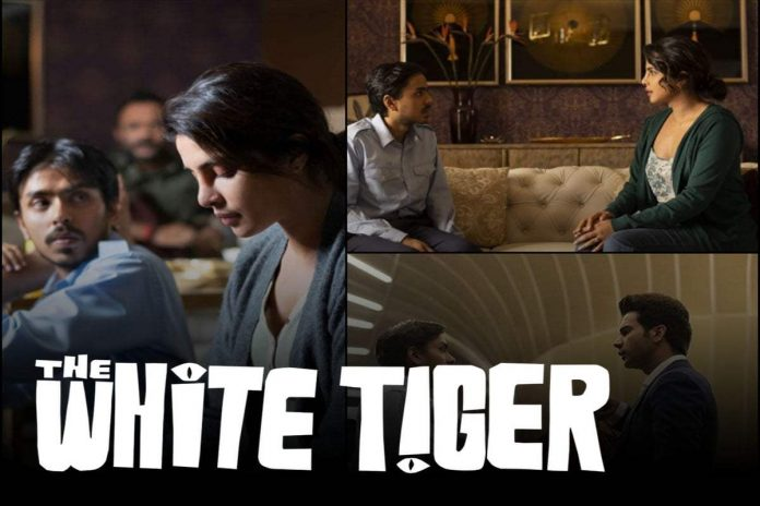 1609010501 The White Tiger Trailer Out Movie reveals the ugly