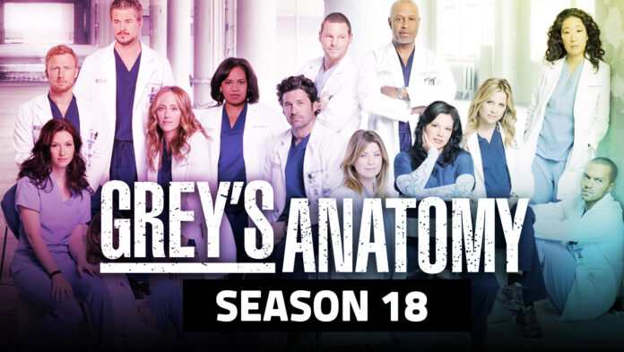 1620743414 Greys Anatomy Season 18 Renewal Update with Release Date and